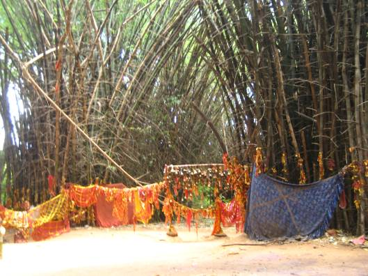 Bamboo bushes worshipped as Mother Goddess